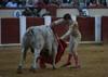 Toros en Valladolid (08/09/07) fiestas valladolid