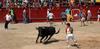 Fiestas en Serrada
